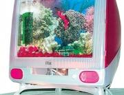 Fish-Computer