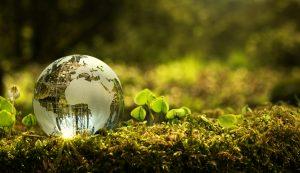 HOBI earth day